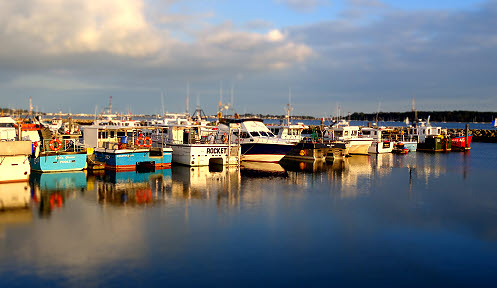 Fishing boats moored on Poole Quay